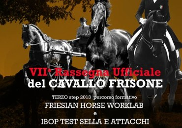 Cavallo Frisone 2013