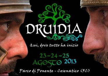 Druidia 2013