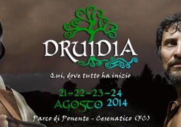 Druidia 2014